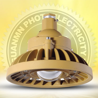 LED Explosion proof lamp GMD110 30W
