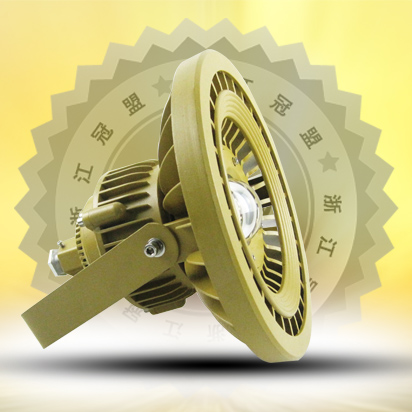 Explosion-proof industrial and mining lamp 80W90W100W