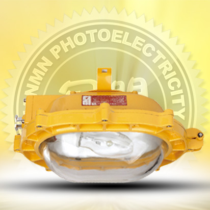 Inside explosion-proof light floodlight