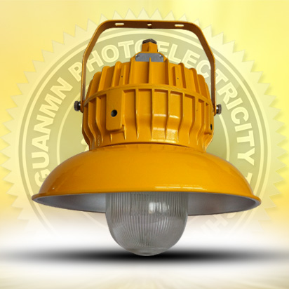 Explosion - proof platform lighting