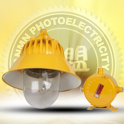 Explosion-proof platform metal halide lamp