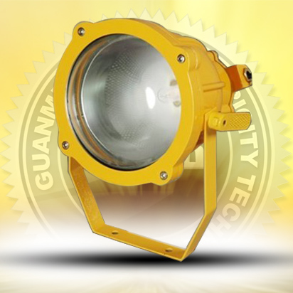 Explosion-proof flood light